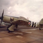 Sea Fury FB11 TF956 RNHF  #01