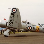 Sea Fury T20 WG655 RNHF #3