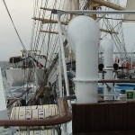 Royal Clipper 043