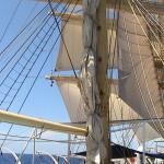 Royal Clipper 052