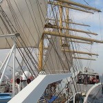 Royal Clipper 393